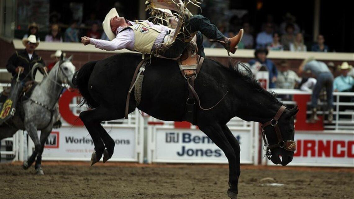 Il rodeo